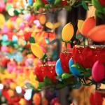 festival lanternes (9)
